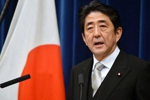 Nhật Bản thành lập đặc khu kinh tế chiến lược ảnh 1