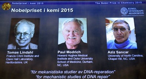 Nobel Hóa học: Ngợi ca 3 'người mở đường' chống ung thư ảnh 1