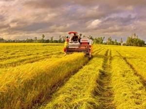 EU cam kết tài trợ 1 tỷ USD cho Việt Nam ảnh 1