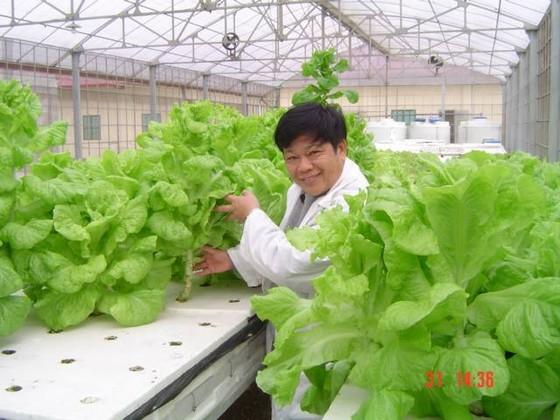 DN đầu tư vào nông nghiệp: Thực tế và bất cập ảnh 1