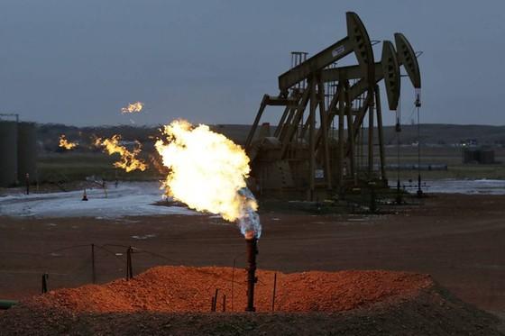 Châu Á không sợ giá dầu giảm ảnh 1