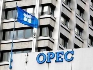 OPEC không thay đổi sản lượng dầu mỏ đến hết năm ảnh 1