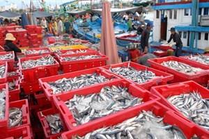 7 giải pháp phát triển ngành thủy sản ảnh 1