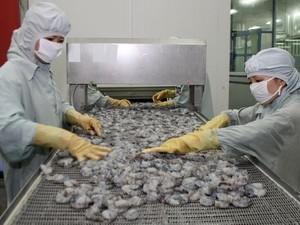 Hoa Kỳ hủy vụ kiện chống trợ giá tôm Việt Nam ảnh 1