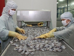 Nhật Bản nâng mức Ethoxyquin tôm Việt Nam ảnh 1