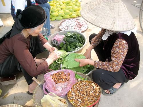 Hồn Việt ảnh 1