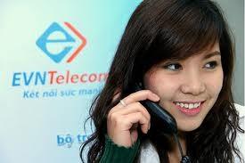 """Hanoi Telecom """"ngỏ lời"""" mua EVN Telecom ảnh 1"""