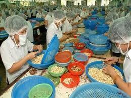 Cơ hội xuất khẩu sang Senegal, Sierra Leone ảnh 1
