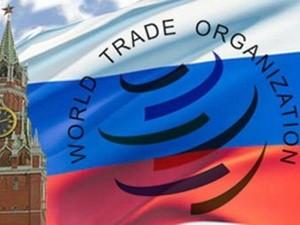 Nga đàm phán gia nhập WTO thất bại ảnh 1