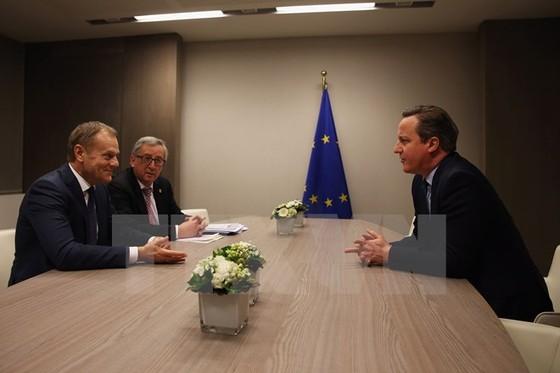 EU nhất trí về thỏa thuận giữ Anh ở lại ảnh 1