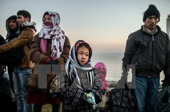 """Đức nhất trí về """"gói tị nạn"""" thứ 2 ảnh 1"""