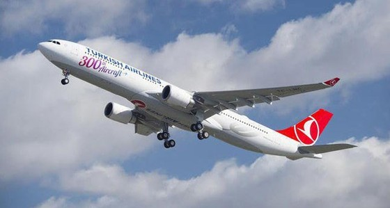 Thổ Nhĩ Kỳ: Máy bay rơi, 16 người chết ảnh 1