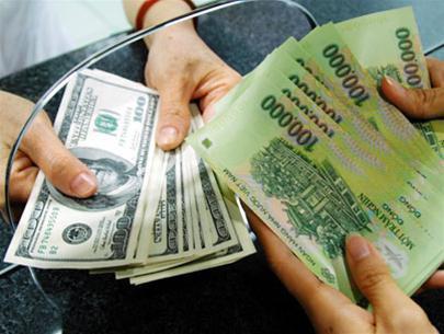 NHNN hạ trần lãi suất gửi USD còn 0-0,25% ảnh 1