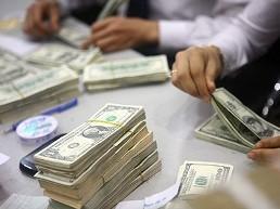 Kiều hối năm 2012 đạt 10 tỷ USD ảnh 1