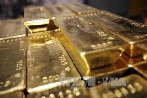 Nga khai thác 250 tấn vàng trong 2013 ảnh 1