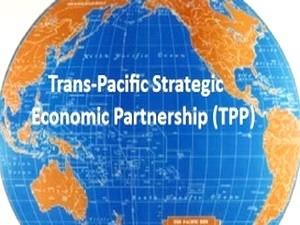 Việt Nam tham gia công bố hiệp định TPP ảnh 1