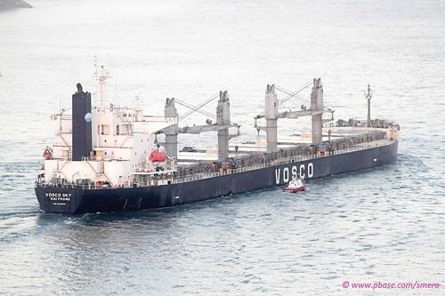 Cổ phiếu vận tải biển: Chờ ngày rời sàn? ảnh 1