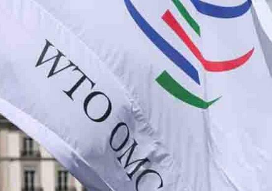 WTO cải cách thương mại đầu tiên trong lịch sử ảnh 1