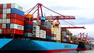 10 mặt hàng có kim ngạch xuất khẩu trên 1 tỷ USD ảnh 1