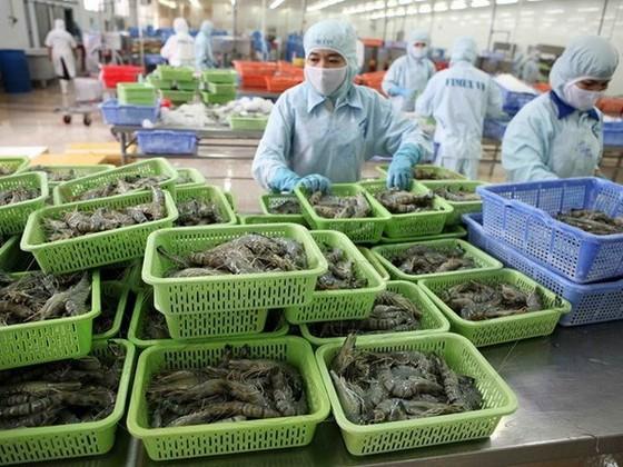 Kim ngạch thương mại Việt-Hoa Kỳ đạt gần 30 tỷ USD ảnh 1