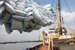 Sẽ có một cuộc chiến giá gạo ở châu Á? ảnh 1