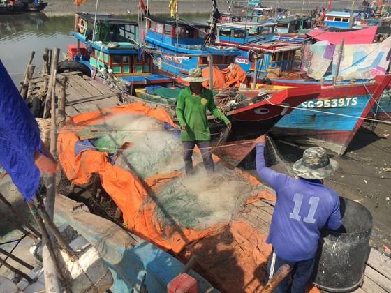 Ngư dân đưa tàu vào bến