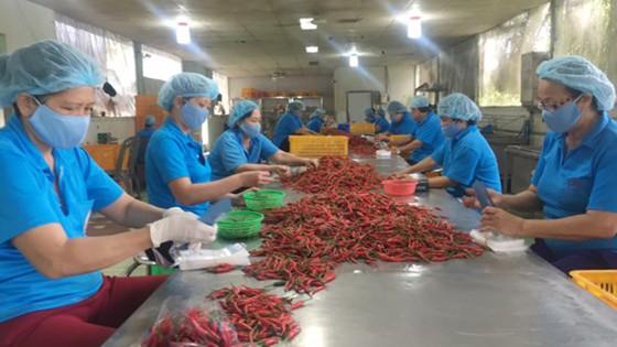 Hơn 90% hàng bày bán tại chợ Bến Thành có xuất xứ trong nước ảnh 2
