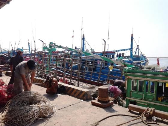 Ngư dân Bình Thuận tất bật chuẩn bị ra khơi sau cơn bão số 12 ảnh 1