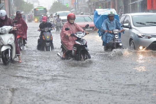Chiều nay TP HCM tiếp tục có mưa giông, gió giật - Ảnh 1.