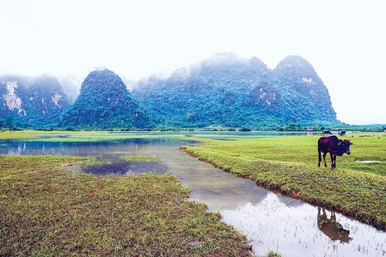 Blogger du lịch quốc tế khám phá Việt Nam ảnh 2