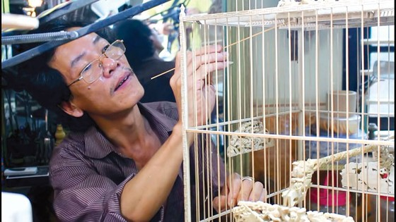 Lồng chim xứ Huế ảnh 1