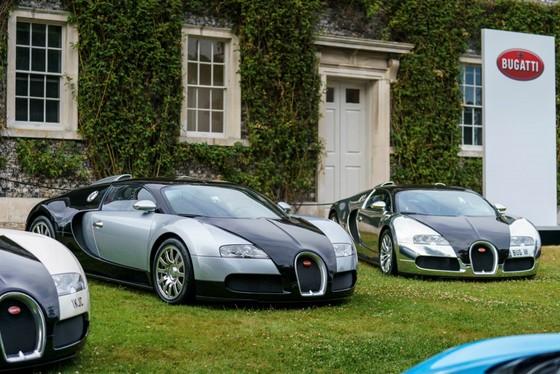 Cuoc hoi ngo dan sieu xe Bugatti hon 9.000 ma luc hinh anh 2
