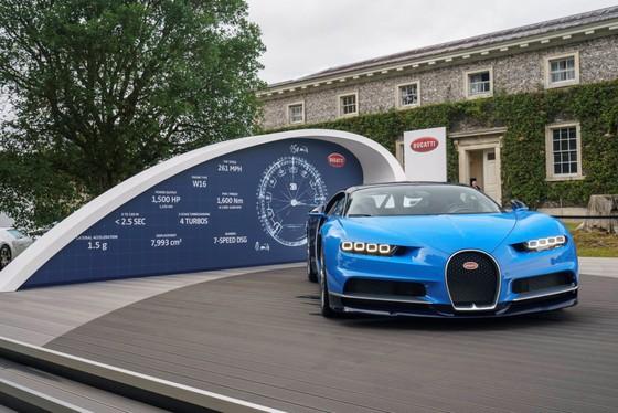 Cuoc hoi ngo dan sieu xe Bugatti hon 9.000 ma luc hinh anh 3