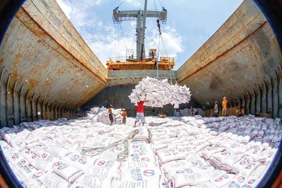 Kinh doanh xuất khẩu gạo vẫn còn rào cản ảnh 1