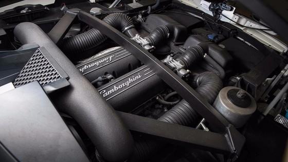 Sieu xe Lamborghini doc nhat tren the gioi hinh anh 7