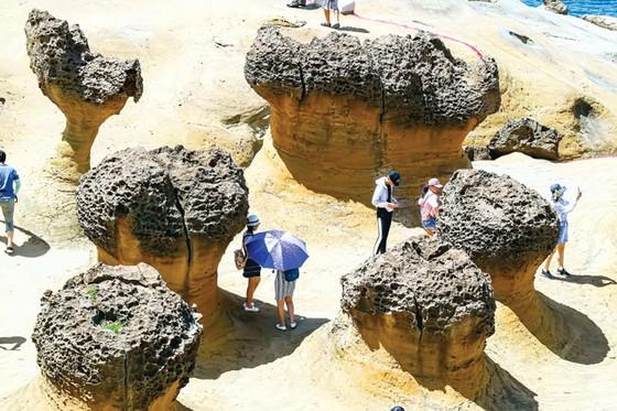 Kiệt tác thiên nhiên công viên địa chất Dã Liễu  ảnh 3