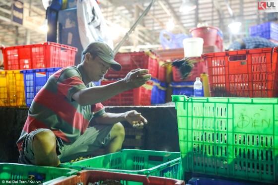 Vất vả trăm phận đời mưu sinh giữa chợ đêm Sài Gòn ảnh 13