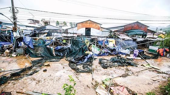 Khánh Hòa, Phú Yên - dồn sức khắc phục hậu quả bão ảnh 1