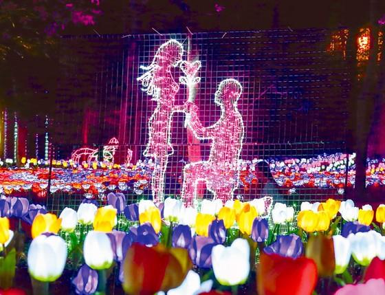 Rực rỡ sắc màu lễ hội đèn LED ảnh 4