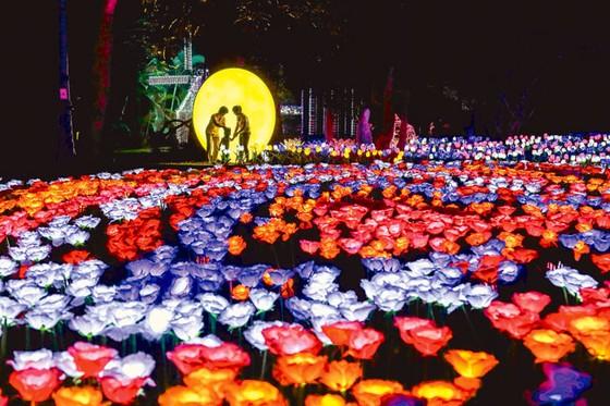 Rực rỡ sắc màu lễ hội đèn LED ảnh 5