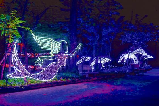 Rực rỡ sắc màu lễ hội đèn LED ảnh 6
