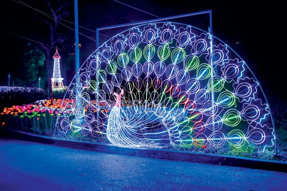 Rực rỡ sắc màu lễ hội đèn LED ảnh 7