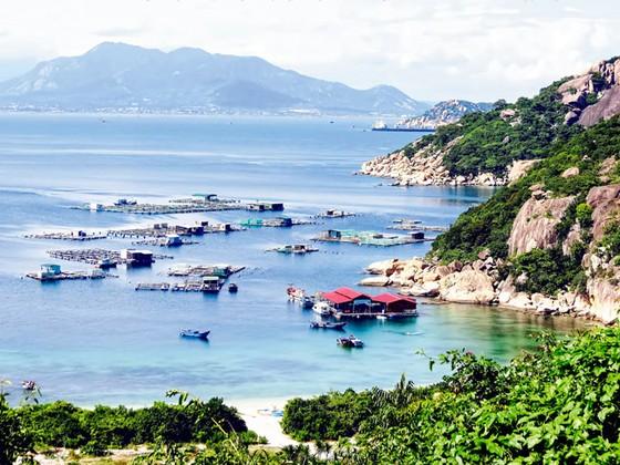 Hoang sơ đảo ngọc Bình Ba ảnh 5