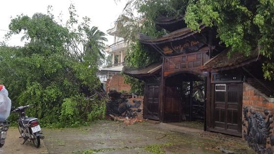 Quy Nhơn, Nha Trang tan hoang sau bão số 12 ảnh 4