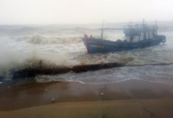 Quy Nhơn, Nha Trang tan hoang sau bão số 12 ảnh 7
