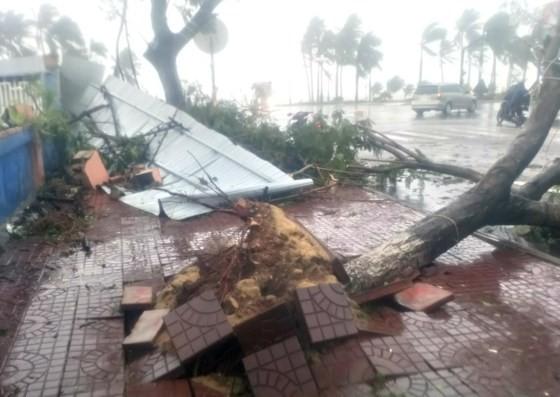 Quy Nhơn, Nha Trang tan hoang sau bão số 12 ảnh 8