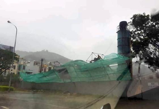 Quy Nhơn, Nha Trang tan hoang sau bão số 12 ảnh 10