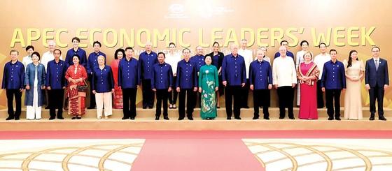 Chủ tịch nước Trần Đại Quang gặp song phương với lãnh đạo các nền kinh tế APEC ảnh 1