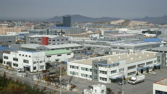 Hàn Quốc tăng hỗ trợ doanh nghiệp tham gia dự án liên Triều ảnh 1