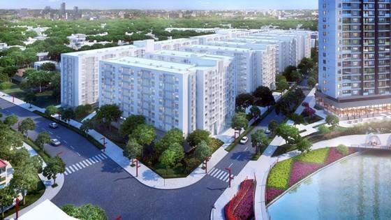 Chen chân nộp hồ sơ mua căn hộ đồng giá 658 triệu đồng  ảnh 3
